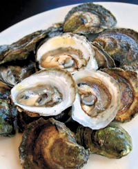 o_flying-point-oysters